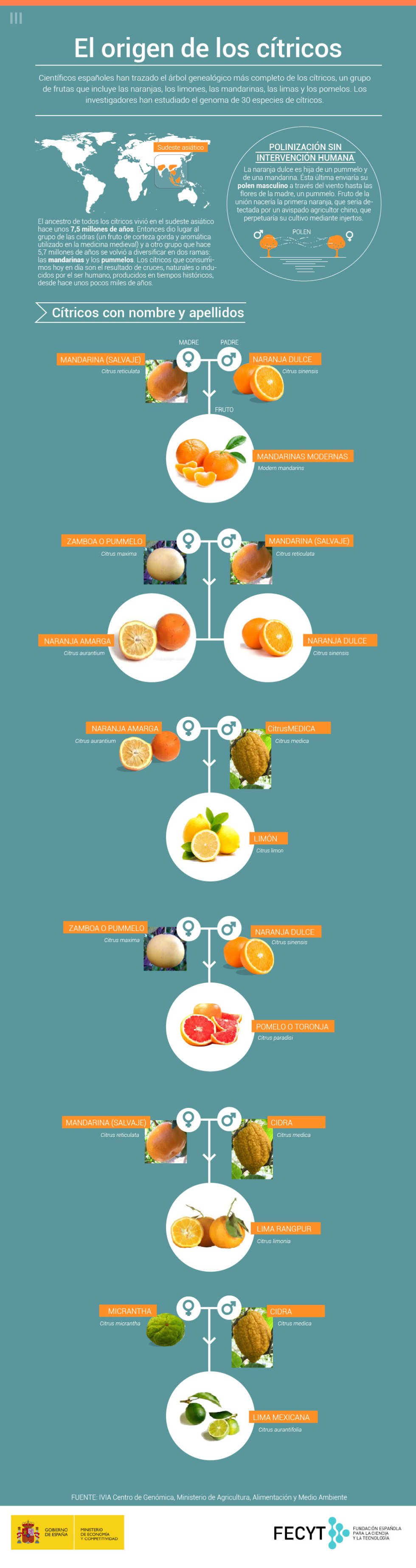 origen_citricos